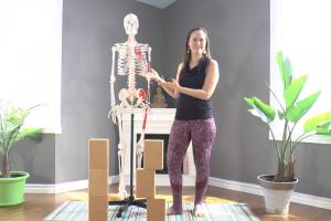 YogAnatomie : 2 exercices simples pour renforcer vos abdos !